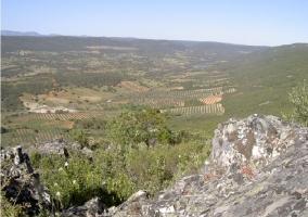 Casa del t o dionisio casas rurales en horcajo de los montes ciudad real - Casa rural horcajo de los montes ...