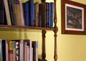 Biblioteca del salón