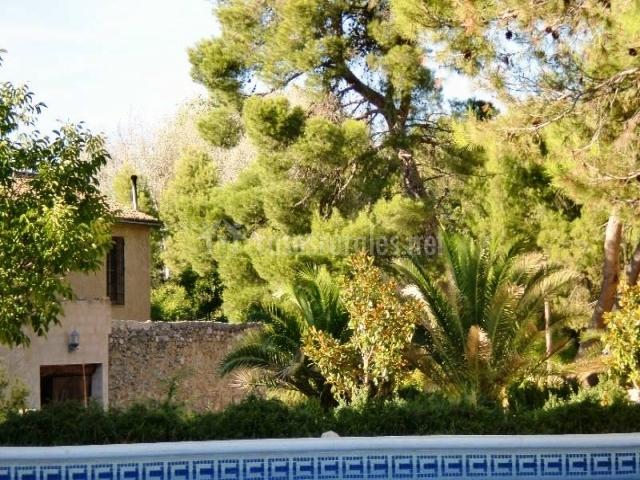 Mas fontanelles hoteles rurales en biar alicante for Plantas para poner cerca de la piscina