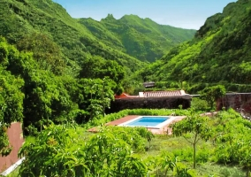 Vistas de la piscina entre naturaleza