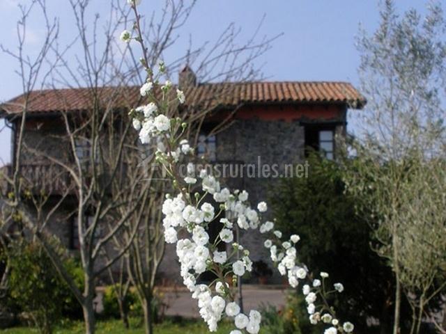 Casa de aldea la labriega en colunga asturias for Casa rural jardin del desierto tabernas