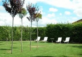 Jardín con tumbonas