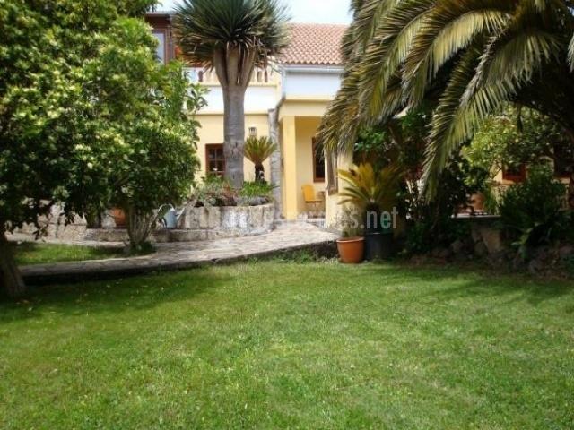 Vistas del jardín con palmeras
