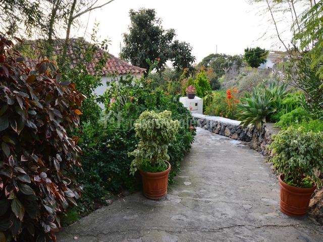 Acceso rodeado de plantas