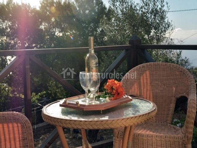 Terraza con vino