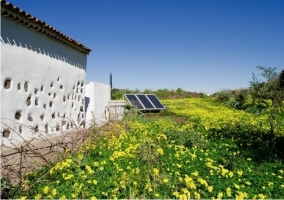 Vistas a las placas solares desde las flores