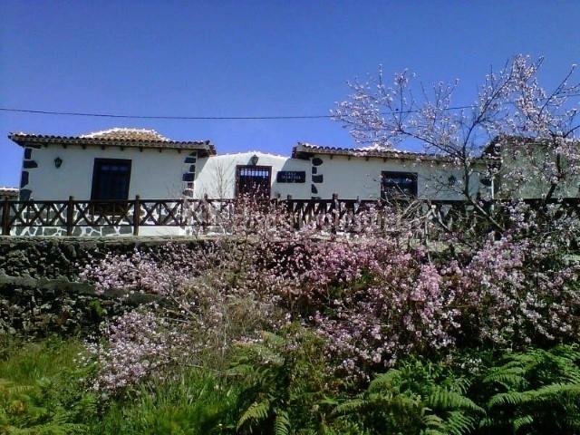 Vista frontal al alojamiento con flores