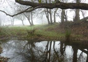 Zona natural en el entorno de la casa rural
