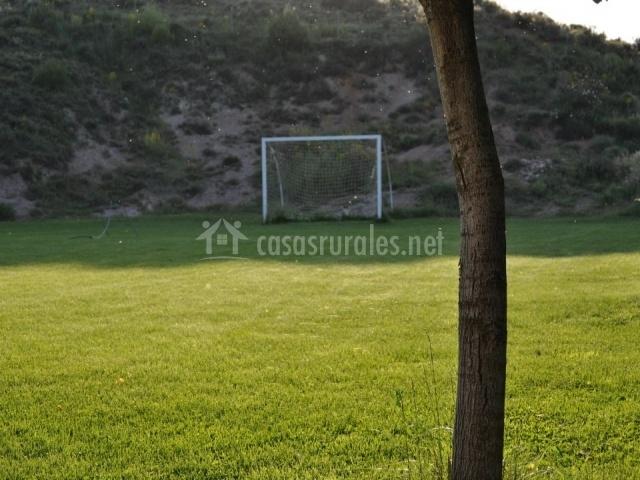 Campo de fútbol visto desde mas cerca con arboles y cesped natural