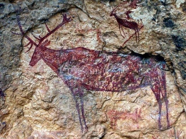 Pintura ruprestere de un ciervo