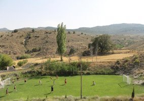 Campo de fútbol con césped natural