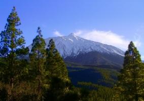 Parque Natural de la Corona Forestal con pico nevado