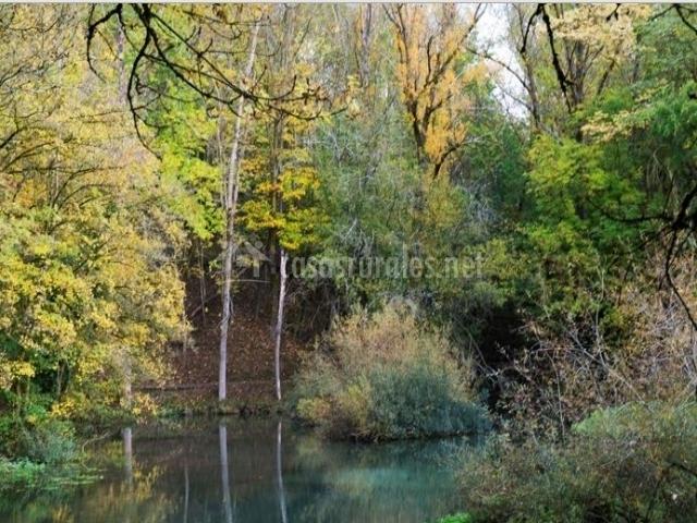 Zona natural del rio en el entorno del pueblo