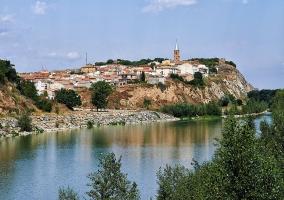 Vista de Milagro desde el rio Aragon