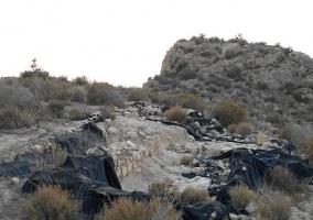 Zona de Cabezo del Tío Pío