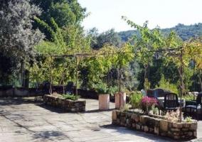 Jardín con árboles, plantas y muebles de jardín