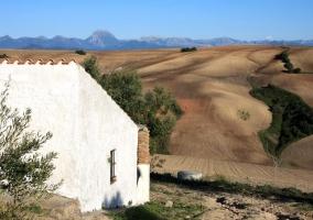 Patio y fachada de la casa
