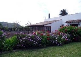 Amplio jardín repleto de plantas y flores