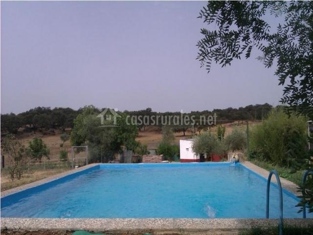 El acebuche en el pedroso sevilla for Casa rural sevilla piscina