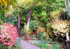 Zona de naturaleza en San Miguel de Robledo