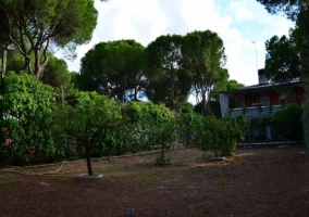 Jardín Almorox