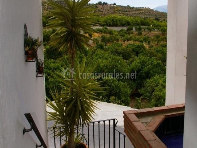 Hotel rural los naranjos en melegis granada for Hostal jardines granada