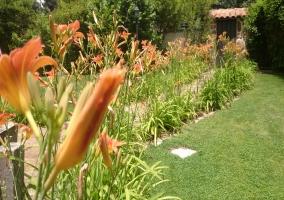 Los jardines con plantas