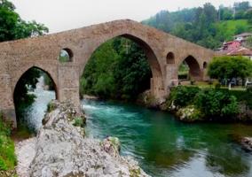 Puente Index, Cangas de Onís