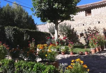 Vistas del jardín con plantas