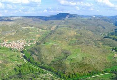 Zona natural desde el Mirador del Tajo
