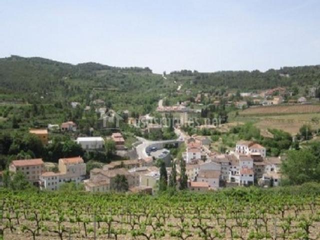 Zona centro del pueblo con cultivos