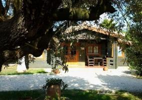 Cabaña II - Entre Viejos Olivos