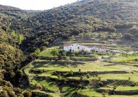 Paisaje junto al Barranc de la Penella