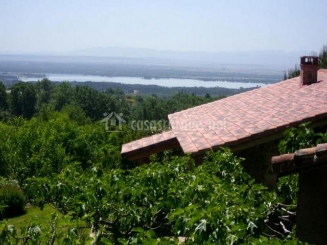 Vista de nuestro tejado rodeado de naturaleza