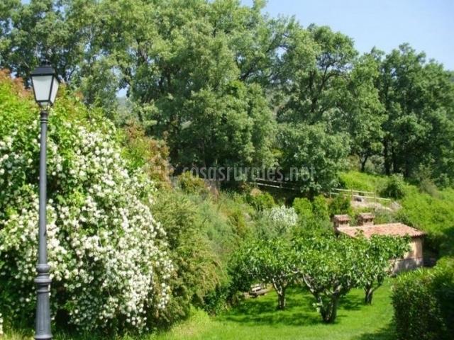 Vistas del jardín con farolas