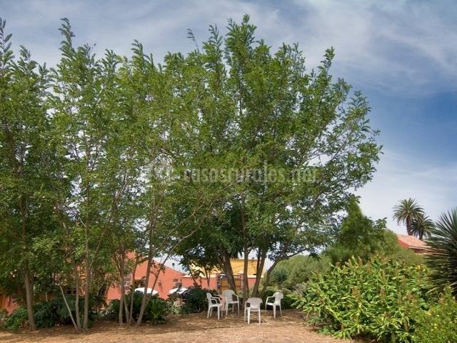 El adelantado en tacoronte tenerife for Casa mobiliario jardin