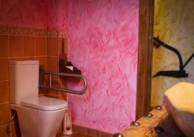 Wc adaptado con paredes rosas