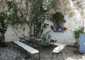 Patio propio de la casa con plantas