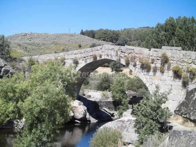 Zona del puente de Hoyocasero