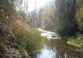 Río Rialb