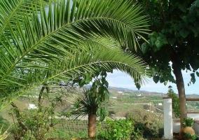 Casa rural trinidad casas rurales en velez malaga m laga - Casa rural trinidad en velez malaga ...