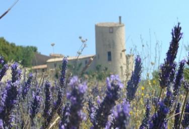 Château de la Gabelle- Gîte Roussillon - Ferrassières, Drôme