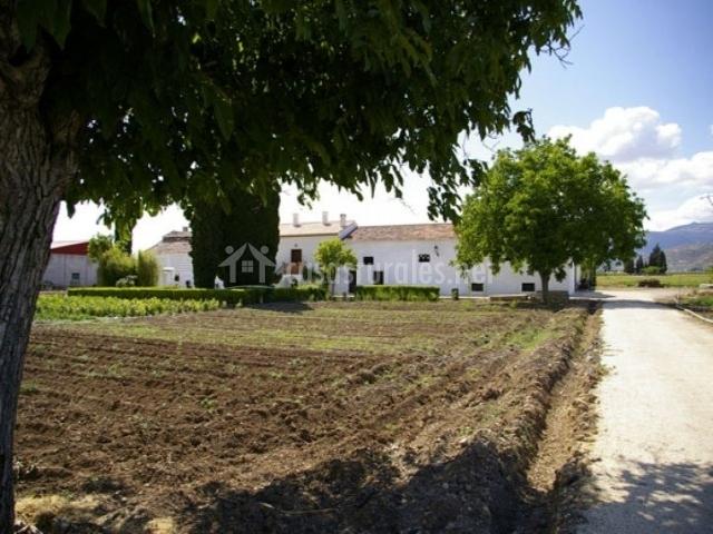 Casa de la abuela cortijo los parrales casas rurales en valderrubio granada - Casa rural los parrales ...