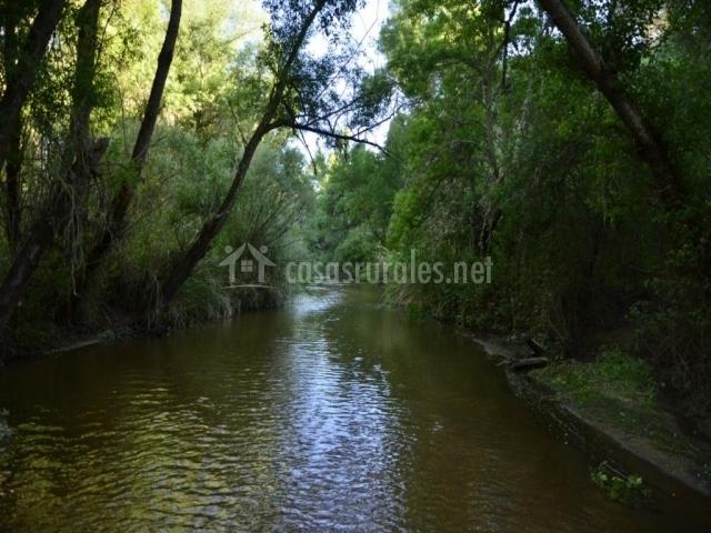 Río Adaja