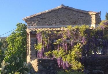 Hameau du Buisson- La Glycine - Saint Roman de Codières, Gard