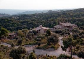 Vista de las casas y bosque de alrededor