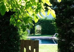 Amplia piscina con jardín alrededor y una tumbona