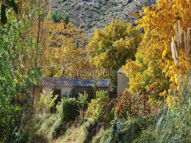 Casas para los amantes de la naturaleza