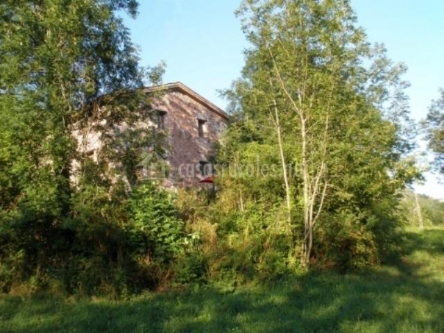 Vista del edificio a traves de los árboles del exterior