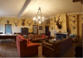 Salón con chimenea sofás